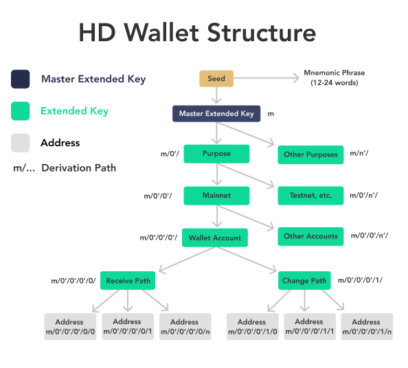 Hierarchical Deterministic Wallets allow users to generate many different accounts and addresses.